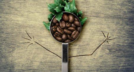15 lucruri de stiut despre cafea explicate de Haute Cup
